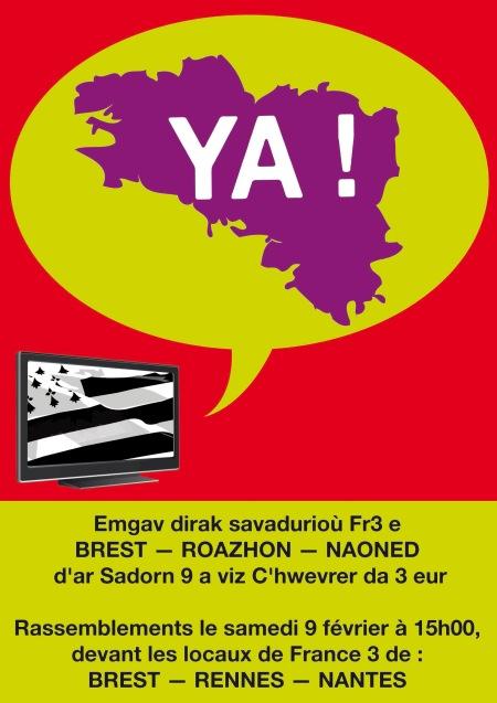 YA-Skinwel-divyezehek-Breizh-2