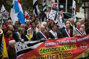 """""""Démocratie et Réunification"""", 19 avril 2014, NAntes"""