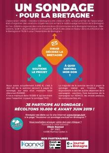 DIBAB_Un_Sondage_Pour_La_Bretagne_Ur_Sontadeg_Evit_Breizh_44_BZH_Reunification_BZH_Reforme_Territoriale_Loire_Atlantique_TMO_A4_Verso